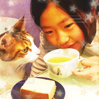 猫,緑,子供,お茶,美味しい