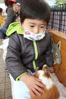 マスクをしている小さな子供の写真・画像素材[1064847]