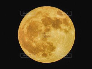 中秋の名月の写真・画像素材[1469483]