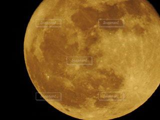 中秋の名月の写真・画像素材[1469489]