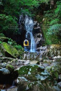 男性,30代,自然,風景,秋,森林,木,森,緑,水,男,滝,旅行,旅,午後,探検,ジャケット,山登り,パーカー