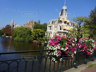 川に架かる橋と鮮やかな花の写真・画像素材[1053132]