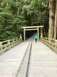 伊勢神宮の森林へと続く橋の写真・画像素材[1053656]