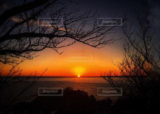 日没の前の写真・画像素材[1217976]