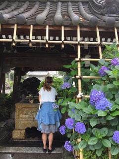 神社,散歩,紫陽花,Snapmart,梅雨,コンテスト,お出かけ,白山神社
