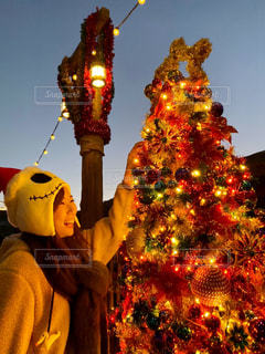 クリスマスツリーの写真・画像素材[2854299]