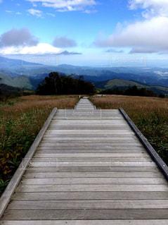 山の中腹に木製のベンチの写真・画像素材[1407058]