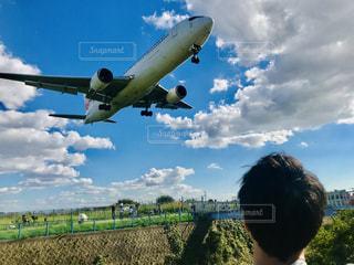 男性,空,屋外,雲,青空,青,後ろ姿,飛行機,人物,人,後姿,旅行,旅,空港,伊丹空港,豊中市