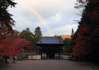 風景,空,紅葉,京都,虹,寺,秋空