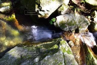 熊野古道の山から流れる水の写真・画像素材[1083876]