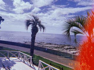 フィルム,フィルム写真,フィルムフォト,フィルムカメラ フィルムフォト 自然光 海 テラス