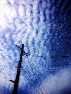 空に広がる鱗雲の写真・画像素材[1127672]