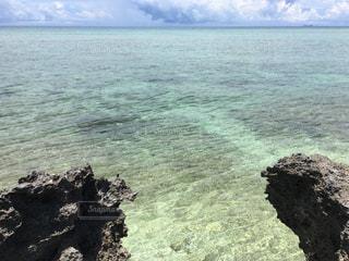 波照間島の浜シタン群落のビーチの写真・画像素材[2334409]