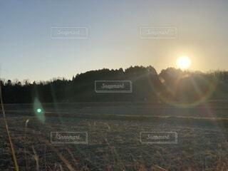 自然,風景,空,屋外,太陽,朝日,雲,日光,光,樹木,正月,朝,お正月,日の出,新年,初日の出