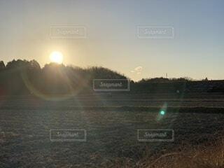 自然,風景,空,屋外,太陽,朝日,光,樹木,眩しい,正月,お正月,日の出,新年,初日の出,日,2021