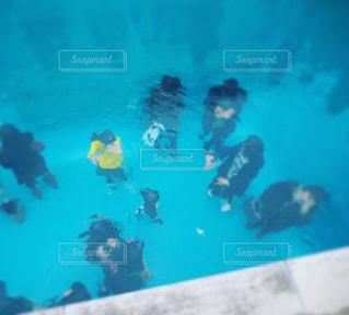 泳ぐの写真・画像素材[194568]