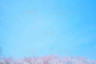 風景の写真・画像素材[1094220]