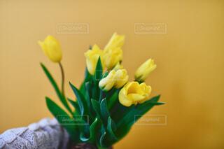 花瓶に花束を入れるの写真・画像素材[4321323]