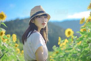 ひまわり畑の少女の写真・画像素材[3520328]