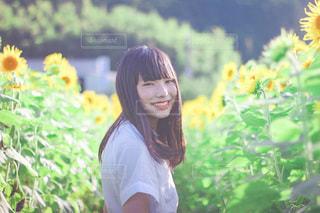 ひまわり畑と少女の写真・画像素材[3520371]