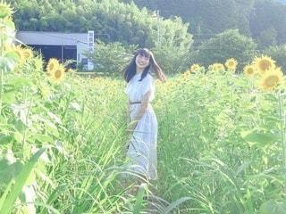 ひまわり畑と少女の写真・画像素材[3520378]
