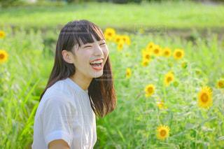 ひまわり畑と少女の写真・画像素材[3520382]