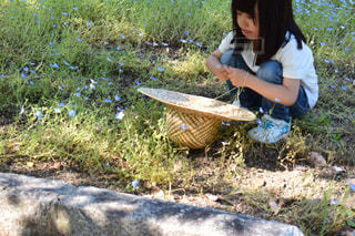 芝生に座っている少女の写真・画像素材[1175893]