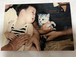 猫を持っている人の写真・画像素材[1257263]