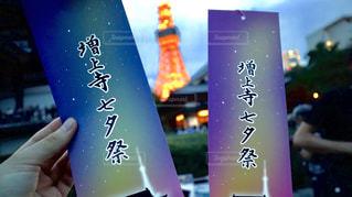 東京タワーの写真・画像素材[1288965]