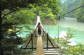 水の体の上の橋の写真・画像素材[1312661]