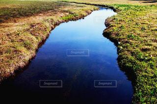 近くに水の体の横にある丘の中腹のアップの写真・画像素材[1312754]