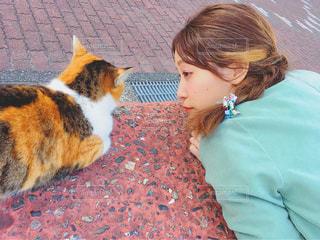 猫と女の子の写真・画像素材[1290722]