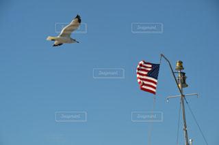 アメリカの青空の写真・画像素材[1096925]