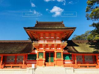 秋晴れの宇佐神宮の写真・画像素材[1094867]