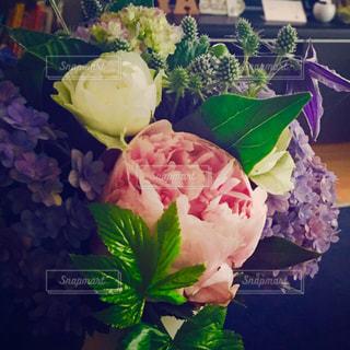 花,屋内,花束,紫,プレゼント,紫陽花,ブーケ,贈り物,梅雨,サプライズ,ギフト,花のある生活