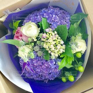 花,屋内,花束,紫,プレゼント,紫陽花,ブーケ,贈り物,グリーン,梅雨,サプライズ,ギフト,花のある生活