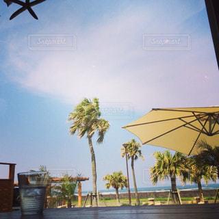 海辺のカフェの写真・画像素材[1423142]