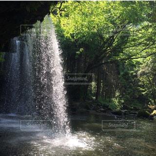 滝の裏側の写真・画像素材[1449286]