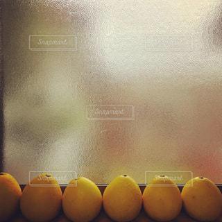 秋,冬,黄色,窓,アート,オレンジ,フルーツ,果物,たくさん,イエロー,文旦,柑橘,yellow,すりガラス,ぶんたん