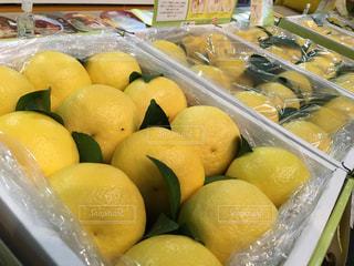 食べ物,黄色,果物,市場,贈り物,イエロー,柑橘,日向夏,ギフト,柑橘類,yellow