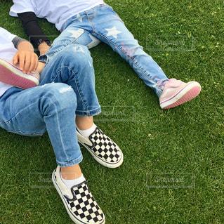草の上の写真・画像素材[2415710]