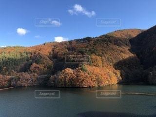 自然,空,秋,紅葉,晴れ,ダム