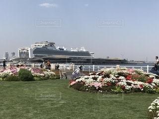 公園,春,屋外,船,チューリップ,樹木,花絶景