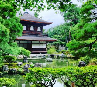 銀閣寺 静寂の空間の写真・画像素材[782112]