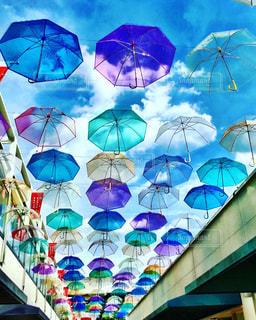 カラフルな傘の花の写真・画像素材[782129]