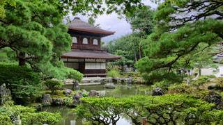 背景の水の庭 - No.906305