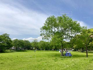 公園の広場の写真・画像素材[1157597]