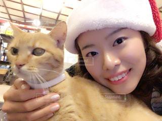 猫とクリスマス!の写真・画像素材[1170988]