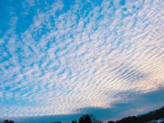 羊雲の写真・画像素材[1095646]