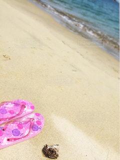 海とサンダルとサザエの写真・画像素材[1422765]